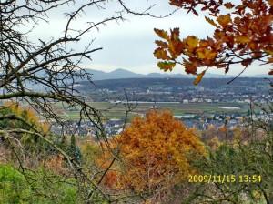Bornheim_01