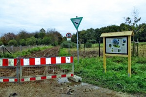 Sanierung Brombeerweg