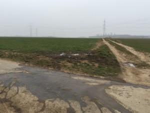 Salierweg Nähe Schranke Linie 16, Nähe Wasserwerk WBV in Widdig (Wasserwerk nicht sichtbar hinter dichten Hecken)