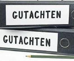 Gut_A
